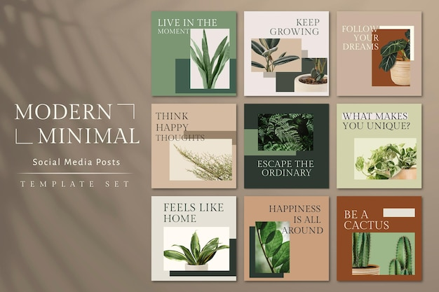 Botanical plant inspirational template psd social media post in minimal style set