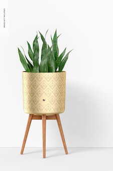 Brass planter with stand mockup, front view