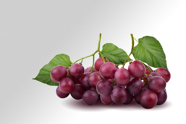 Bunches of fresh ripe red grapes on alpha background.