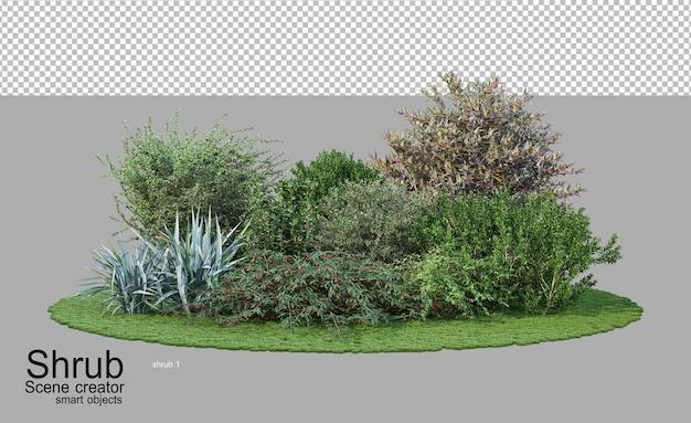 다양한 종류와 모양의 덤불과 꽃