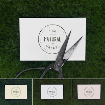 Business card above grass mock up