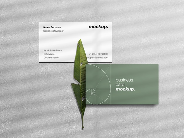 Business cards on concrete with green leaf and shadow overlay mockup