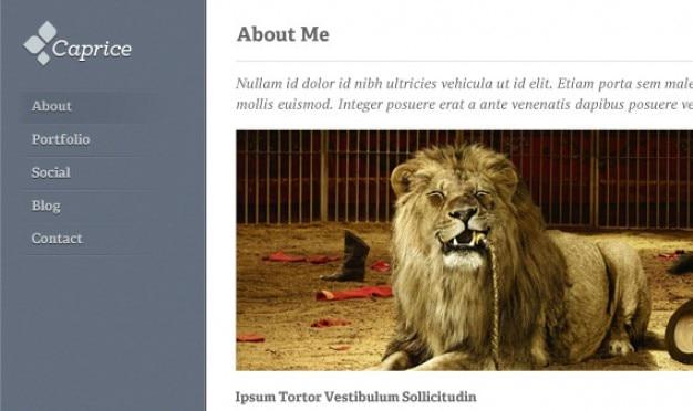 Caprice homepage & blog psd