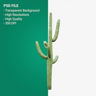 Carnegiea gigantea 3d render isolated on transparent background