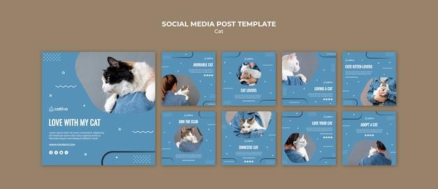 고양이 연인 개념 소셜 미디어 게시물
