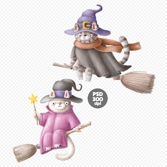 Cats witches cute hand-drawn characters isolated