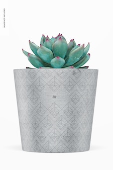 Cement pot mockup, front view