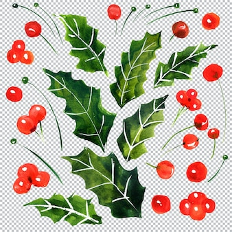 Christmas and new year botanical watercolor elements, layered illustration