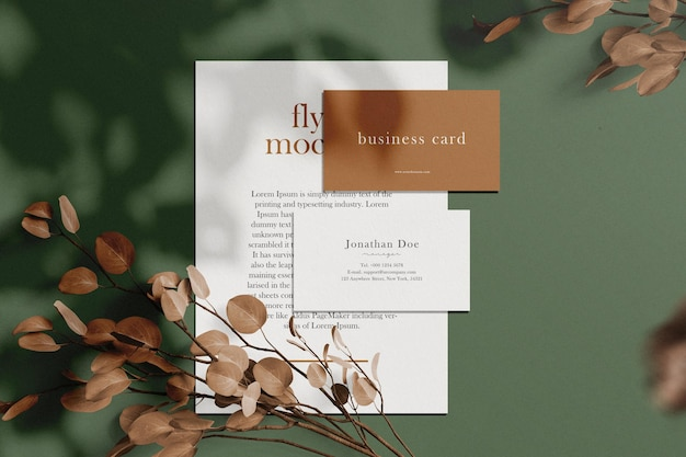 Clean minimal business card and flyer mockup on background with dry plant