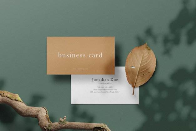 Clean minimal business card mockup on background with branches and dry leaf