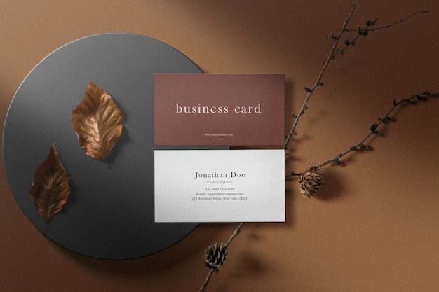 Clean minimal business card mockup on box with dry leaves