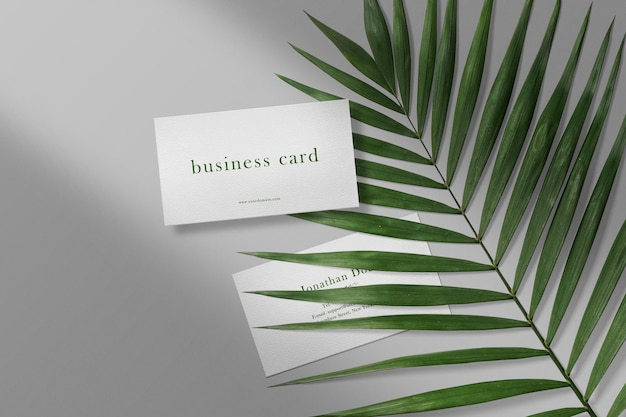 Чистый минимальный макет визитки на листьях с тенью и светом