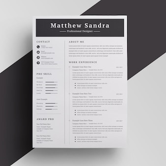 Clen and professional resume template