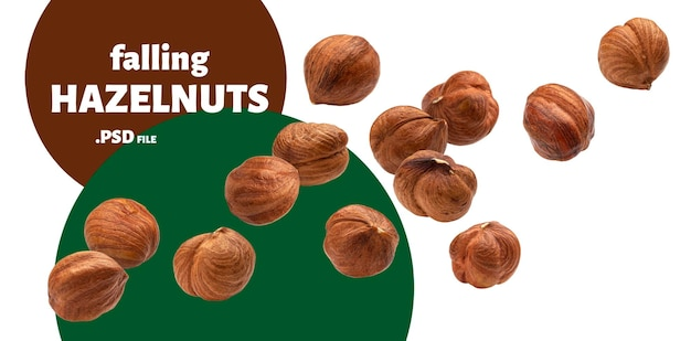 Close up on falling hazelnuts isolated