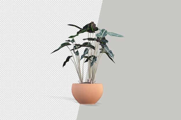 ポットインテリア3dレンダリングで花をクローズアップ Premium Psd