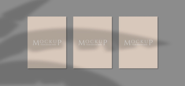 Close up on poster mockups with plant shadow