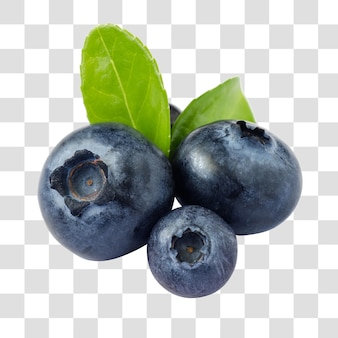 Close-up view of fresh blueberries. healthy eating and nutrition, layered psd file