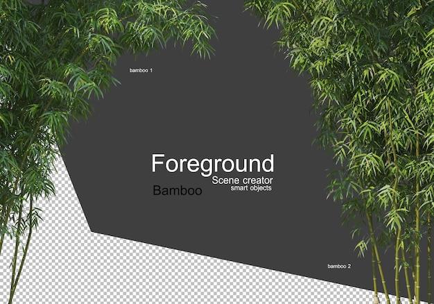 Крупным планом вид красивых бамбуковых деревьев