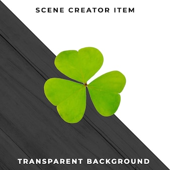 Clover isolated with clipping path.