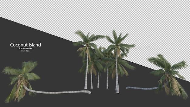 Кокосовая пальма в 3d-рендеринге изолированные