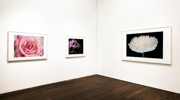 Collection of floral art pieces on the wall