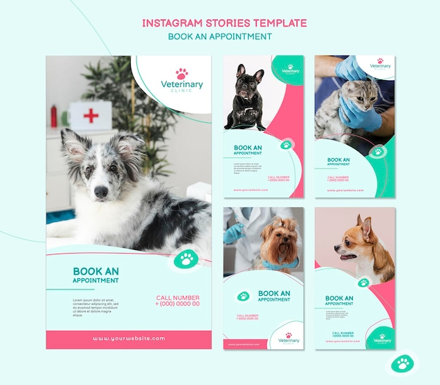 Collection of instagram stories for vet appointment
