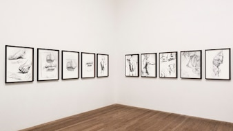 Collection of sketched human body parts framed on a wall
