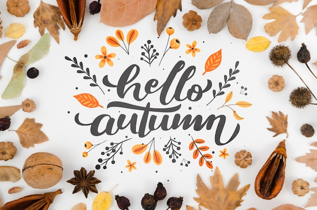 Colorful leaves surrounding hello autumn lettering