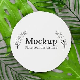 モックアップと緑の葉の構成