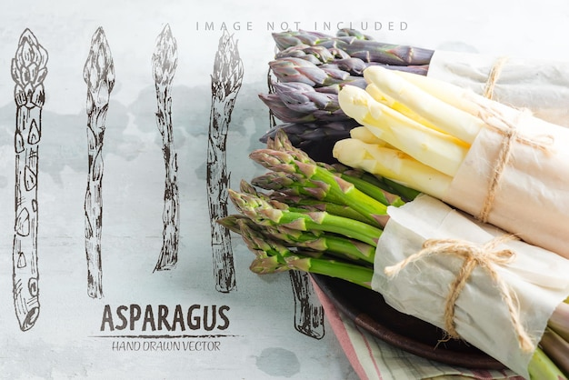 Креативная граница из выращенных в домашних условиях сырых органических пурпурных зеленых и белых копий спарагуса, готовых для приготовления здоровой вегетарианской диетической пищи на каменной поверхности. копирование пространства. веганская концепция.