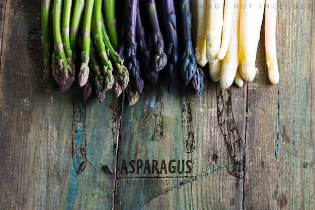 Creative border from home grown raw organic purple green and white sparagus spears ready for cooking healthy vegetarian dieting food  copy space vegan concept
