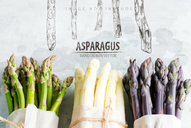Creative border from home grown raw organic purple green and white sparagus spears ready for cooking healthy vegetarian dieting food on a stone surface copy space vegan concept