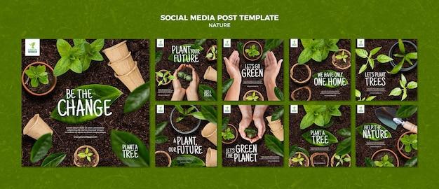 Coltivare piante modello di post sui social media