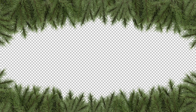 Cut out pine branches frame background
