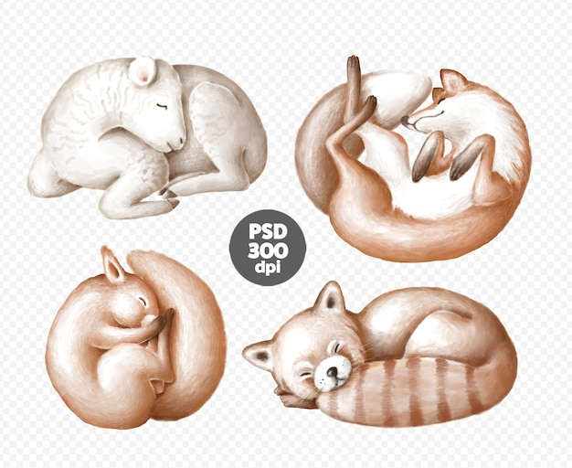 Cute sleeping animals clipart set isolated