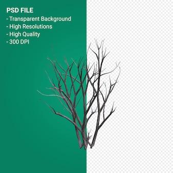 Мертвое дерево 3d визуализации, изолированные на прозрачном фоне