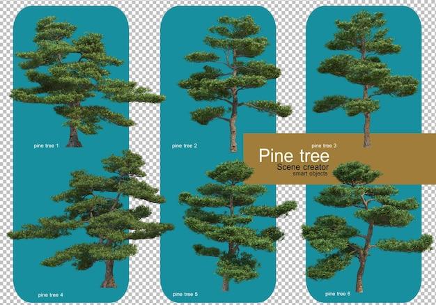 다양한 패턴의 소나무 표시