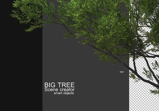 Display a large tree foreground rendering