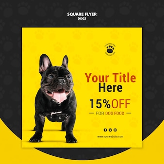 Dog food discount square flyer style