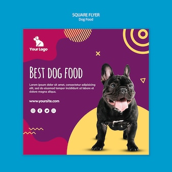 Dog food square flyer template