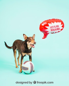 Dog mockup with speech balloon