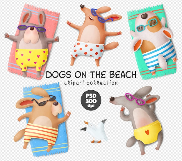 Dogs on the beach, funny dogs characters psd clipart