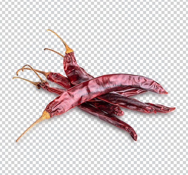 말린 붉은 고추 또는 고추 카이엔 고추 절연 프리미엄 psd