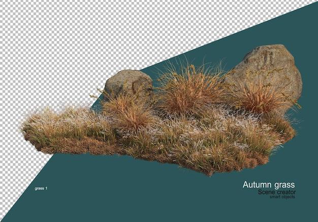 Dry grass garden in autumn