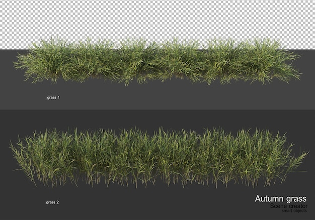 秋の乾いた草の庭