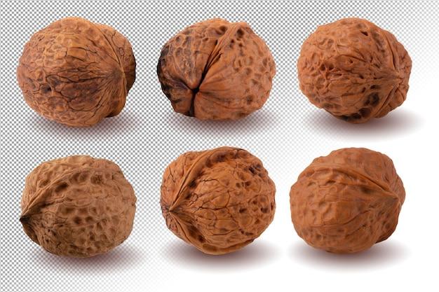 Сухой грецкий орех, изолированные на альфа-фоне.