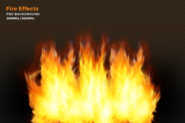 Fire flames effects on black background