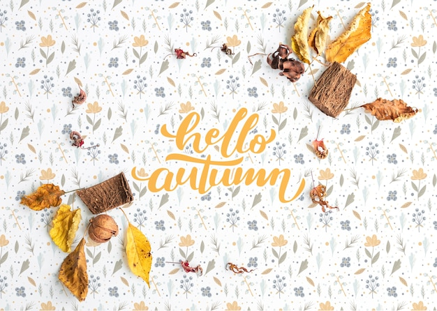 Flat lay of colorful hello autumn background