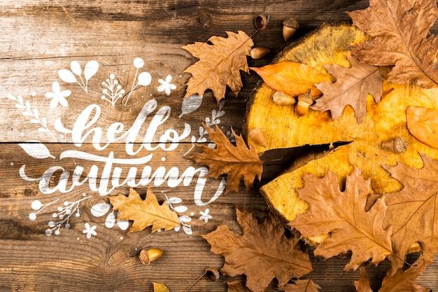 Плоская планировка с листьями и пнем