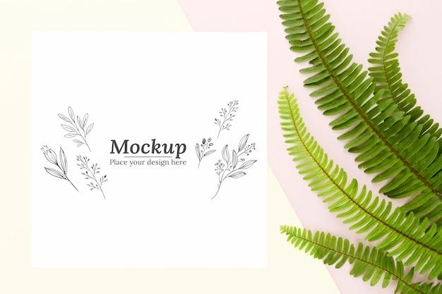 Disposizione delle foglie verdi piatte con mock-up
